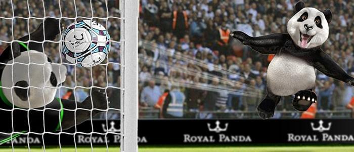 Royal Panda Sportsbook Intro