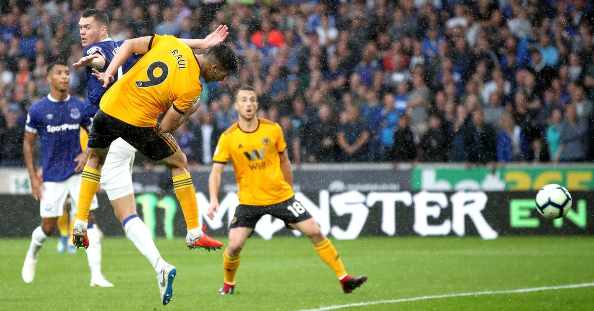 Everton vs Wolverhampton Preview, Tips and Odds ...