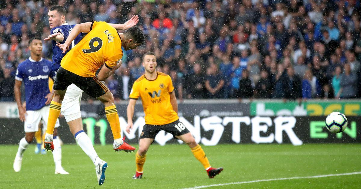 Everton vs Wolverhampton Preview, Tips and Odds - Sportingpedia