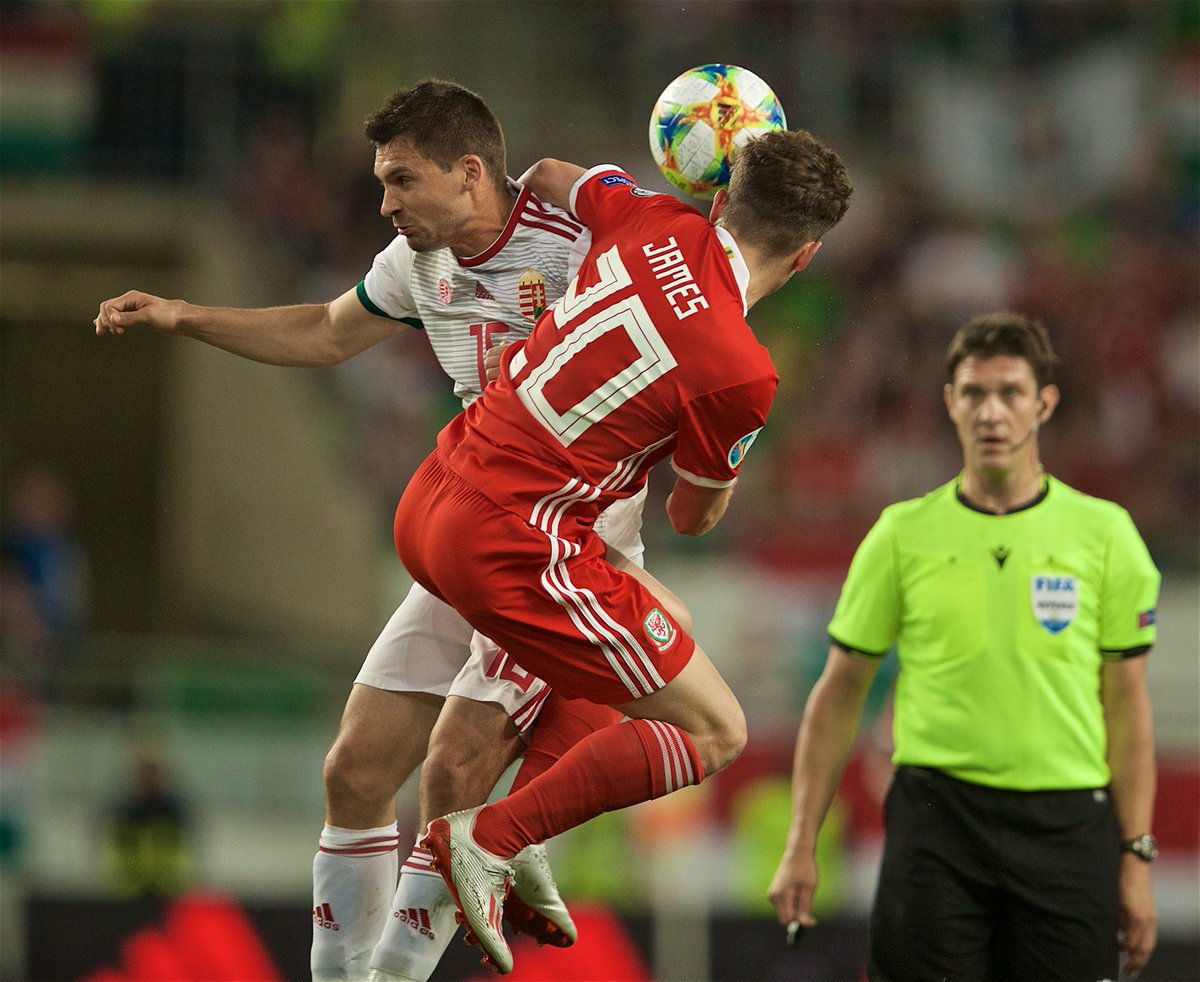 Wales Ungarn